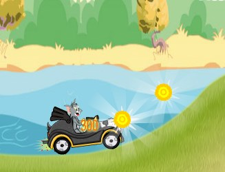 Tom and Jerry Green Valley Game